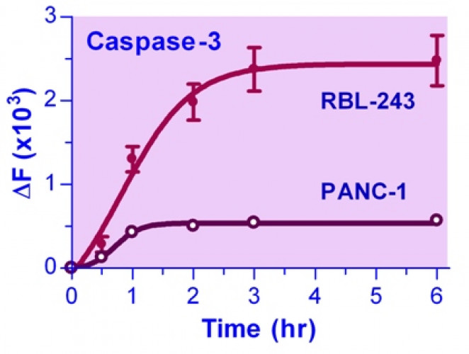 QuantiFluo™ Caspase-3 Assay Kit