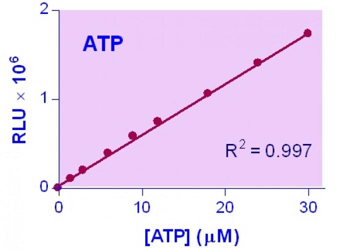 EnzyLight™ ATP Assay Kit