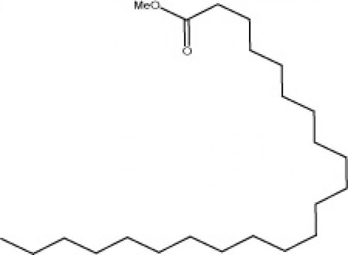 Methyl docosanoate