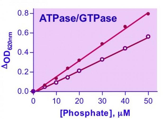 QuantiChrom™ ATPase/GTPase Assay Kit