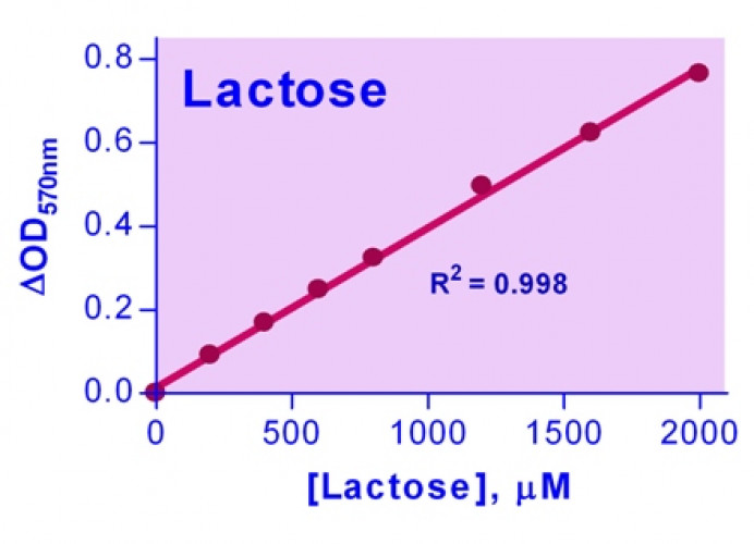 EnzyChrom™ Lactose Assay Kit