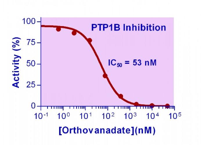 Phosphatase Inhibitor (Sodium Orthovanadate)