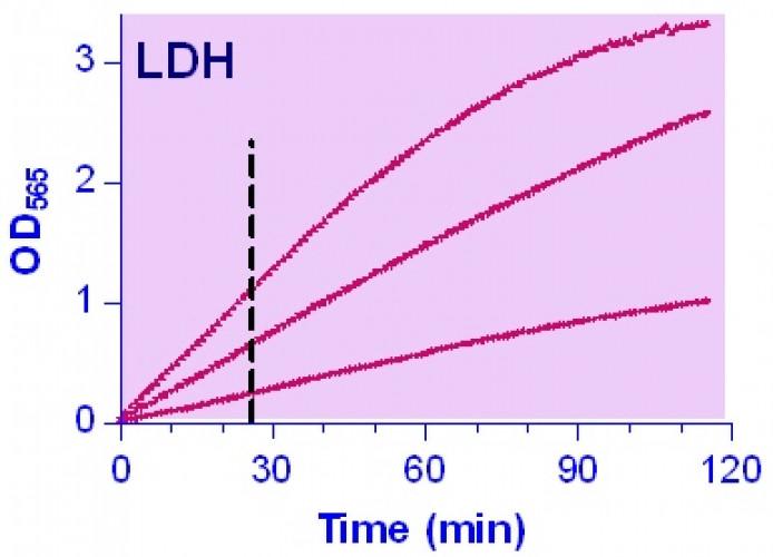 QuantiChrom™ Lactate Dehydrogenase Kit