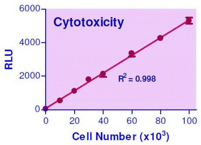 EnzyLight™ Cytotoxicity Assay Kit