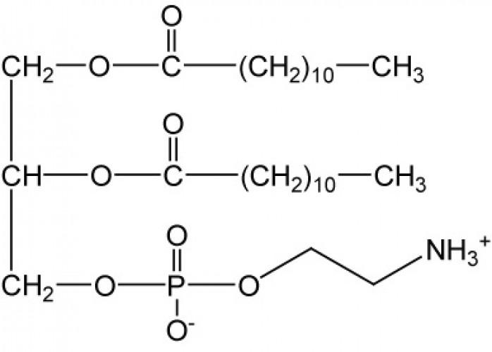 1,2-Dilauroyl-sn-glycero-3-phosphorylethanolamine, (DLPE)