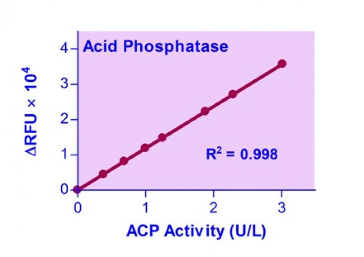 QuantiFluo™ Acid Phosphatase Assay Kit