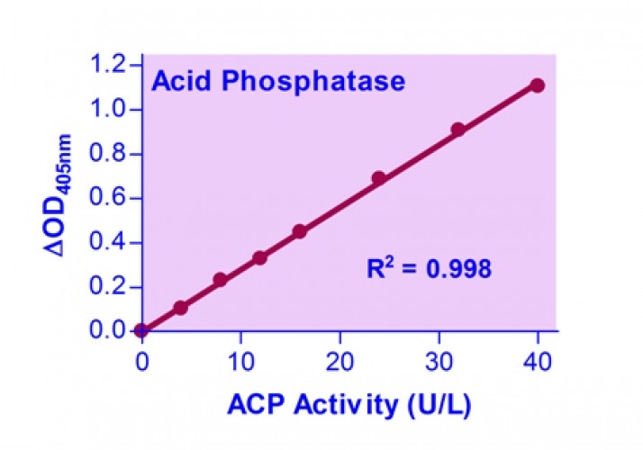 QuantiChrom™ Acid Phosphatase Assay Kit