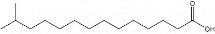 13-Methyltetradecanoic acid