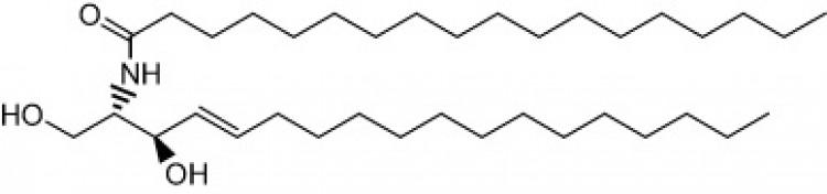 N-Octadecanoyl-D-erythro-sphingosine