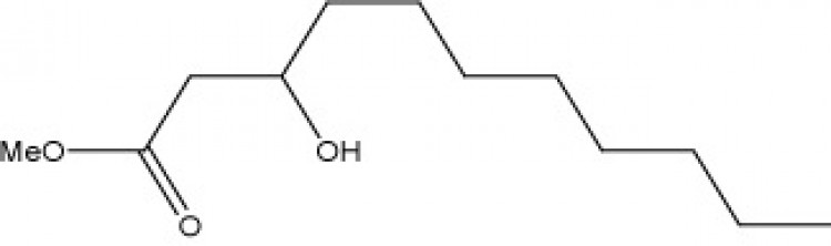 Methyl 3-hydroxyundecanoate