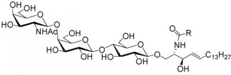 Gangliotriosylceramide
