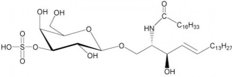 N-Heptadecanoyl-sulfatide