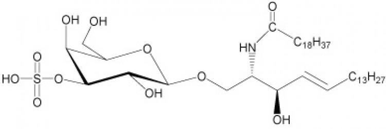 N-Nonadecanoyl-sulfatide