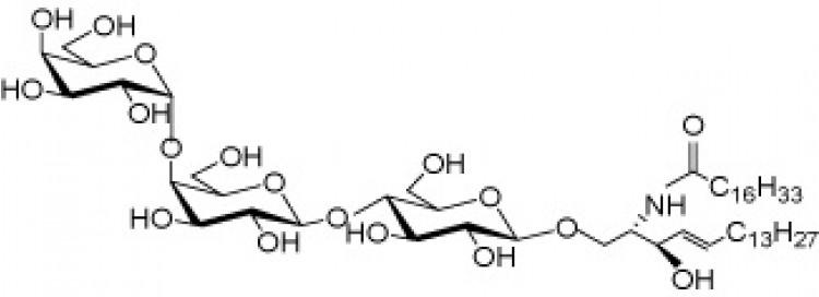 N-Heptadecanoyl ceramide trihexoside