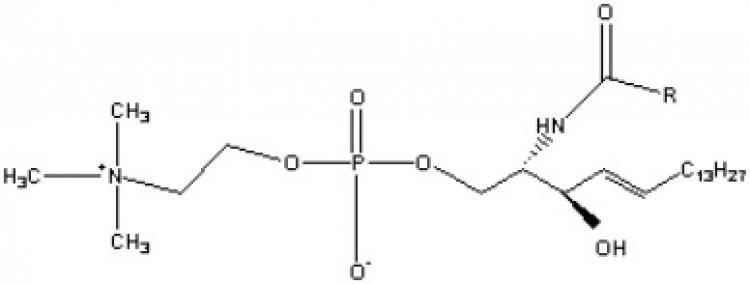 Sphingomyelin (porcine RBC)