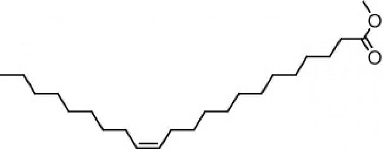 Methyl docosenoate (cis-13),100 mg