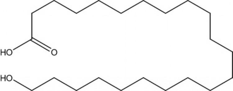 22-Hydroxydocosanoic acid