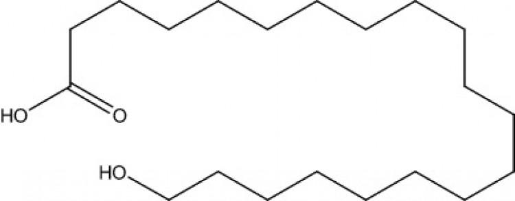 20-Hydroxyeicosanoic acid