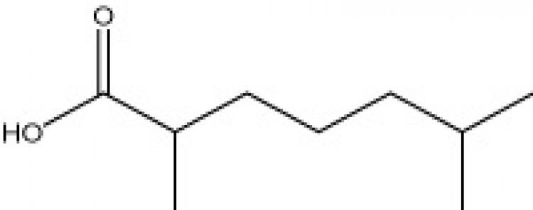 D,L-2,6-Dimethylheptanoic acid