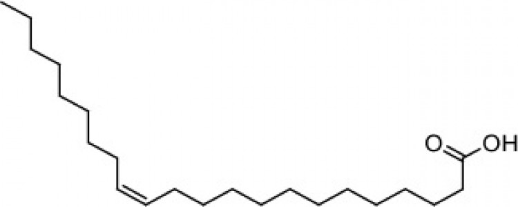Docosenoic acid (cis-13)