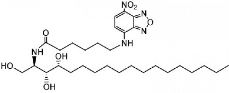 N-Hexanoyl-NBD-phytosphingosine
