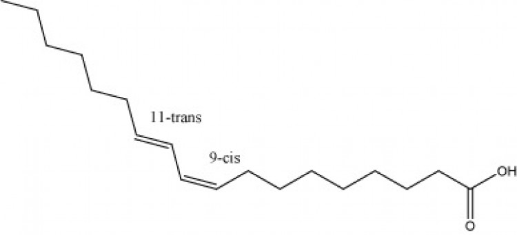9(Z),11(E)-Octadecadienoic acid
