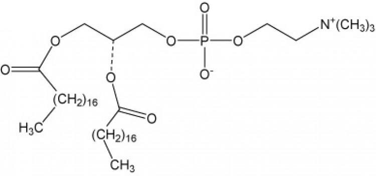 1,2-Distearoyl-sn-glycero-3-phosphorylcholine, (DSPC)