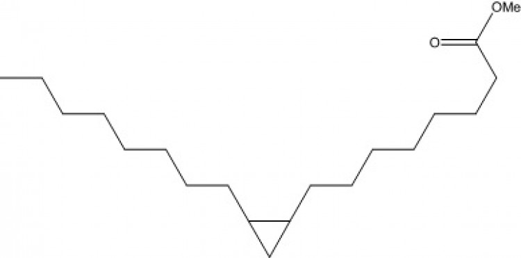Methyl cis-9,10-methyleneoctadecanoate