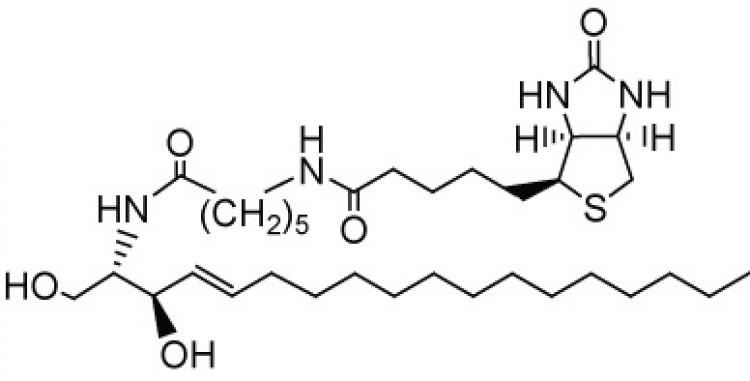 N-Hexanoyl-biotin-D-erythro-sphingosine