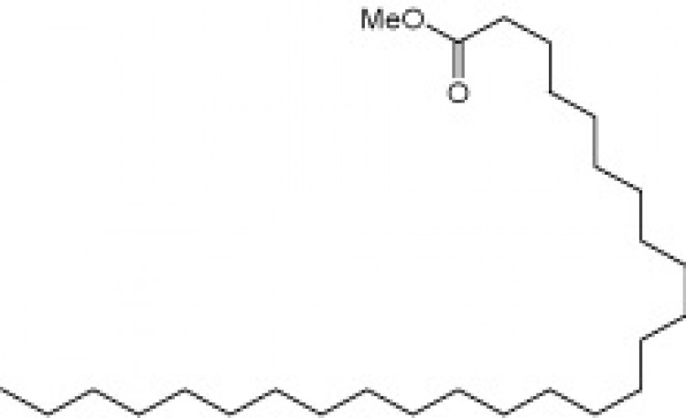 Methyl hexacosanoate