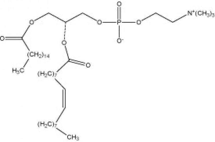 1-Palmitoyl-2-oleoyl-sn-glycero-3-phosphorylcholine, (POPC)
