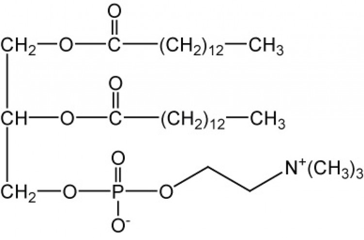 1,2-Dimyristoyl-sn-glycero-3-phosphorylcholine, (DMPC)