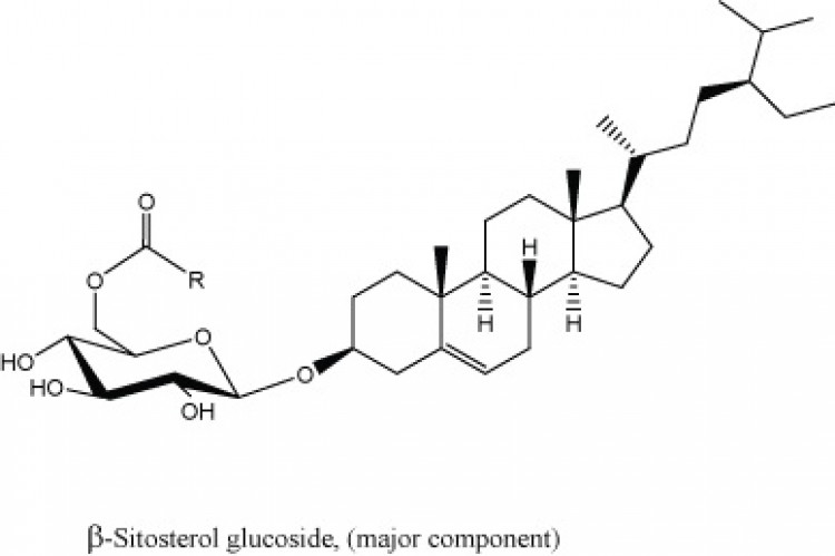 Esterified Steryl Glucosides