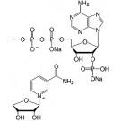 Nicotinamide adenine dinucleotide phosphate-Na2-salt