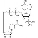 Nicotinamide adenine dinucleotide phosphate reduced -Na4-salt