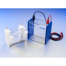 BlueVertical(TM) PRiME(TM) Mini Slab Gel Electrophoresis Unit (10 x 10 cm)