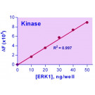 EnzyChrom™ Kinase Assay Kit