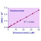 EnzyChrom™ Oxaloacetate Assay Kit