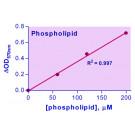 EnzyChrom™ Phospholipd Assay Kit