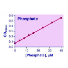 Malachite Green Phosphate Assay Kit