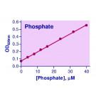 Malachite Green Phosphate Assay Kit