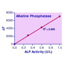 QuantiFluo™ Alkaline Phosphatase Assay Kit