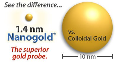 Nanogold Labelling Reagents